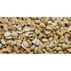 Amendoim Sem  Pele  Elma Chips 40g