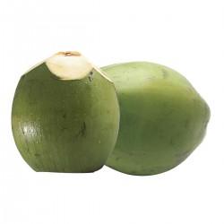 Coco Verde - 1 Unidade
