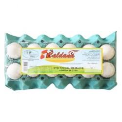 Ovo Branco - Caldana 20 ovos