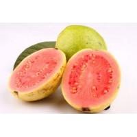 Goiaba Congelado - Fruta 1 kg